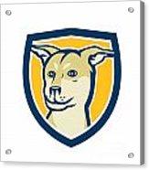 Husky Shar Pei Cross Dog Head Shield Cartoon Acrylic Print