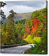 Hwy 281 In The Fall  Acrylic Print