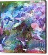 Hydrangea Photoart II Acrylic Print
