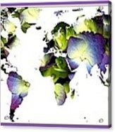 Hydrangea World Map Acrylic Print