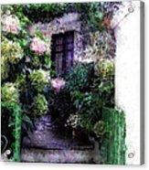 Hydrangeas In Rhodes Acrylic Print by Judy Paleologos
