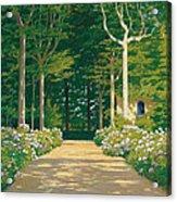 Hydrangeas On A Garden Path Acrylic Print