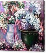 Hydrangeas Still Life Pink Acrylic Print