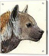 Hyena Head Study Acrylic Print by Juan  Bosco