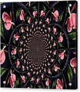 Hypnotic Hearts Acrylic Print