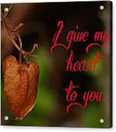 I Give My Heart To You Acrylic Print by Old Pueblo Photography