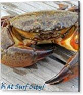I Got Crabs At Surf City Acrylic Print