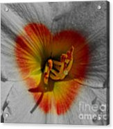 I Heart Flowers Acrylic Print