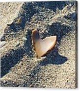 I Heart The Beach Acrylic Print