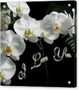 I Love You Greeting - White Moth Orchids Acrylic Print