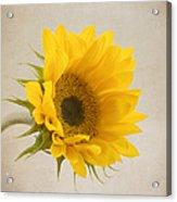 I See Sunshine Acrylic Print