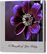 I Thought Of You Today Acrylic Print