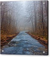 I Walk A Lonely Road Acrylic Print