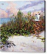 Ibis Sunset Acrylic Print