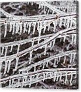 Ice Abstract 2 Acrylic Print