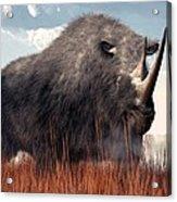 Ice Age Rhino Acrylic Print