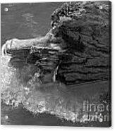 Ice Among The Floating Tree Acrylic Print