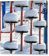 Ice And Snow-5637 Acrylic Print