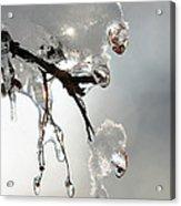 Ice And Snow-5739 Acrylic Print
