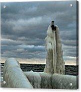Ice Coat Acrylic Print
