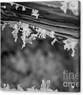 Ice Crystals Frozen In The River Acrylic Print