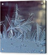 Ice Crystals Of Winter Acrylic Print