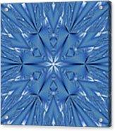 Ice Flower Fractal Acrylic Print