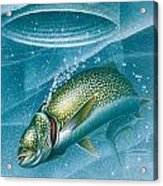 Ice Laker Acrylic Print