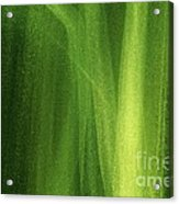 Ice On A Window With Light Painting That's Green Acrylic Print
