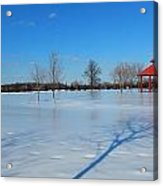 Ice On Snow Acrylic Print