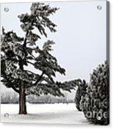 Ice Storm Scenery Acrylic Print