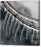 Ice Teeth Acrylic Print