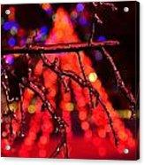 Ice Tree 2 Acrylic Print by Jeffrey J Nagy