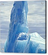 Iceberg Antarctica Acrylic Print