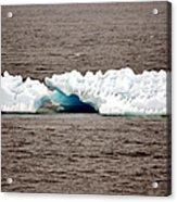 Iceburg With Passenger Acrylic Print