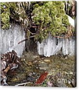 Icicles In The Stream Acrylic Print