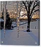 Icicles On The Canal Acrylic Print