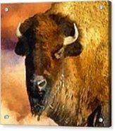 Icon Of The Plains Acrylic Print