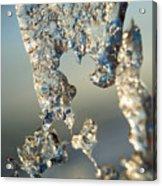 Icy Closeup Acrylic Print