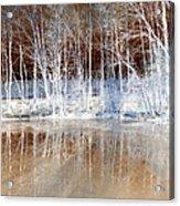 Icy Reflections Acrylic Print
