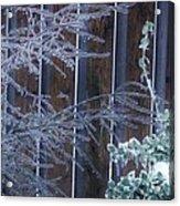 Icy Verticles Acrylic Print