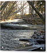 Icy Winter Morning Acrylic Print