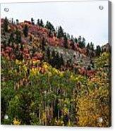 Idaho Colors In Fall Acrylic Print