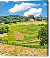 Idyllic Agricultural Landscape Panoramic View Acrylic Print