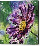 If Flowers Could Talk 04 Acrylic Print