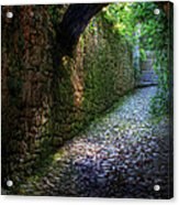 If Stones Could Talk Acrylic Print