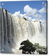 Iguacu Falls Acrylic Print