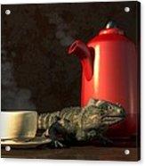 Iguana Coffee Acrylic Print