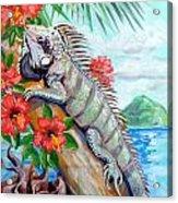 Iguana Hibiscis Acrylic Print