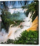 Iguazu Natural Wonder Acrylic Print